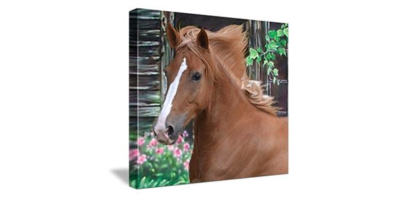 canvas of brown and white horse next to barn with pink flowers